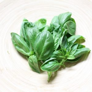 香辛野菜(ハーブ、薬味、とうがらし)
